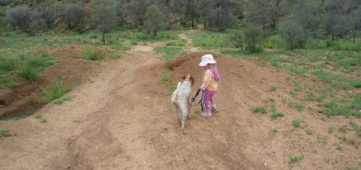 Hiking in the Outback