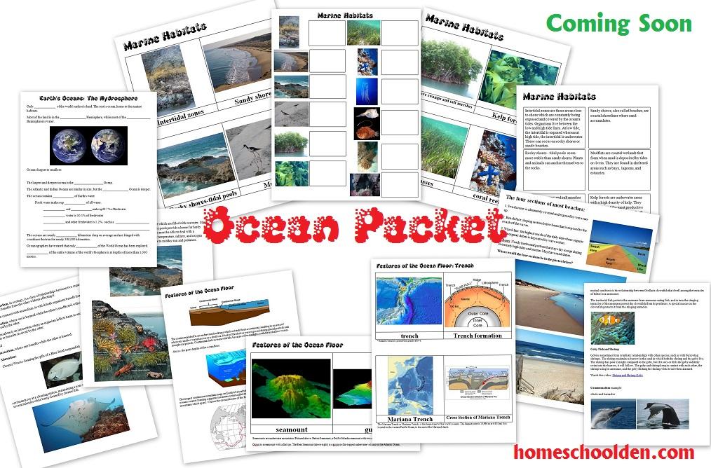 Ocean-Packet