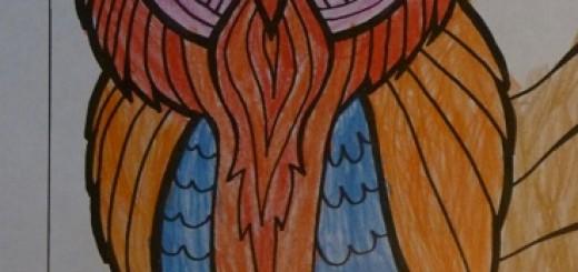 owl-DD