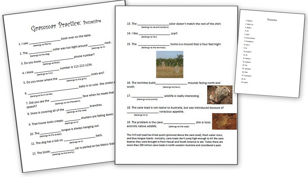 Grammar Practice Possessive Nouns And Pronouns Homeschool Den