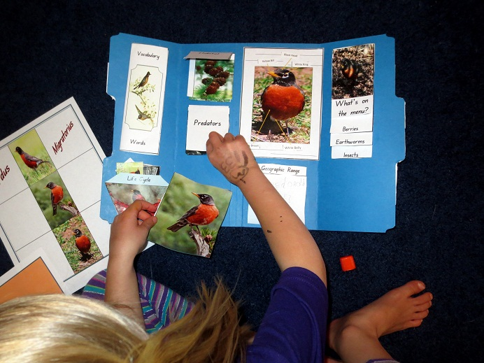 Science And Nature Activities For School Age