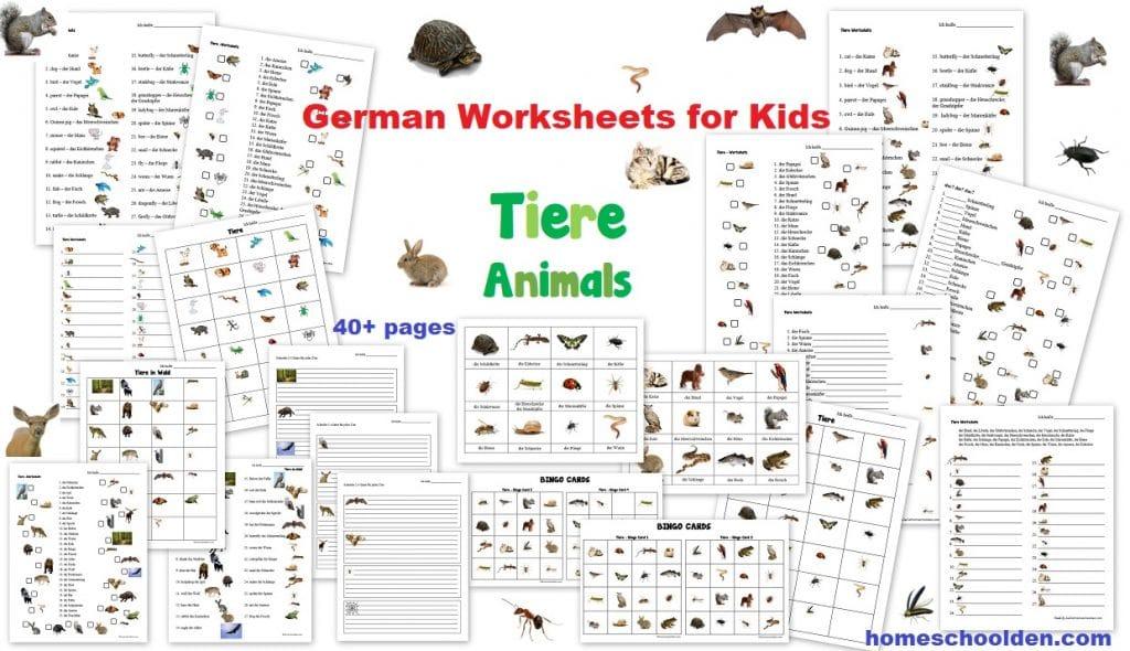 German Worksheets for Kids - Tiere Animals Tiere im Wald Forest Animals