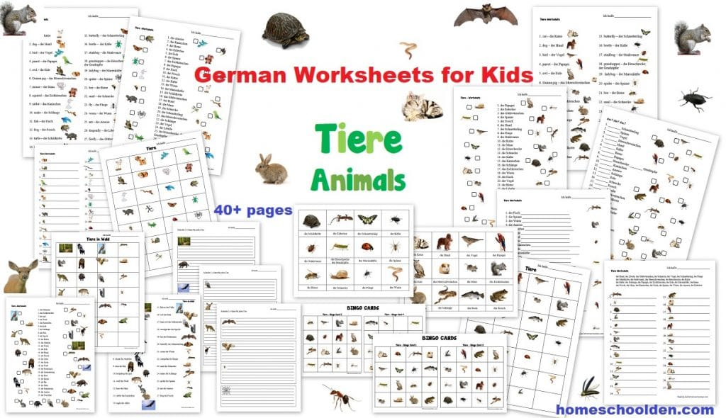 http://homeschoolden.com/wp-content/uploads/2013/07/German-Worksheets-for-Kids-Tiere-Animals-Tiere-im-Wald-Forest-Animals.jpg