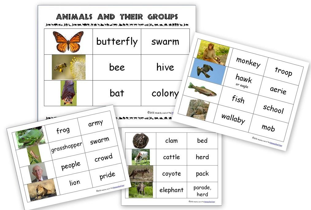 Science Vertebrates Invertebrates Archives Homeschool Den