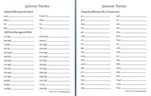 GrammarPractice-Endings Plurals Past Tense 2