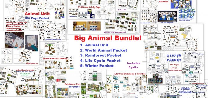 Big Animal Bundle