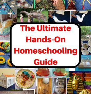 The Ultimate Hands-On Homeschooling Guide- Square -test