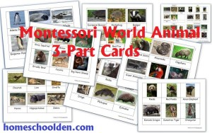Montessori World Animal Cards