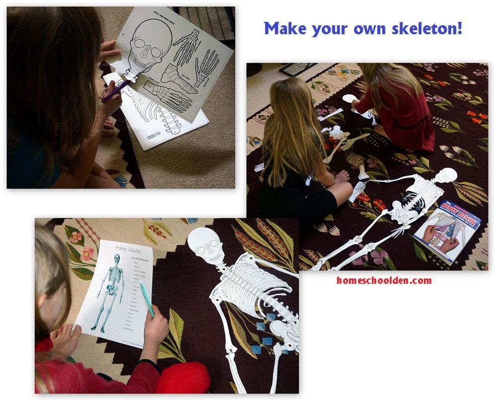 Make-your-own-Skeleton