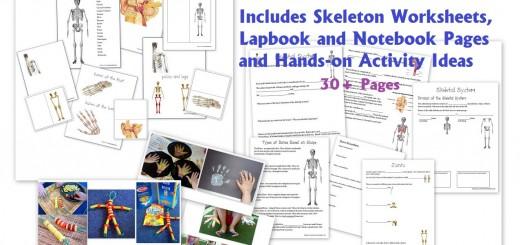 Skeletal System Worksheets