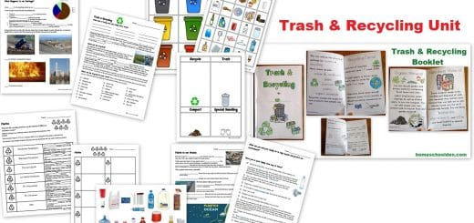 Trash and Recycling Unit