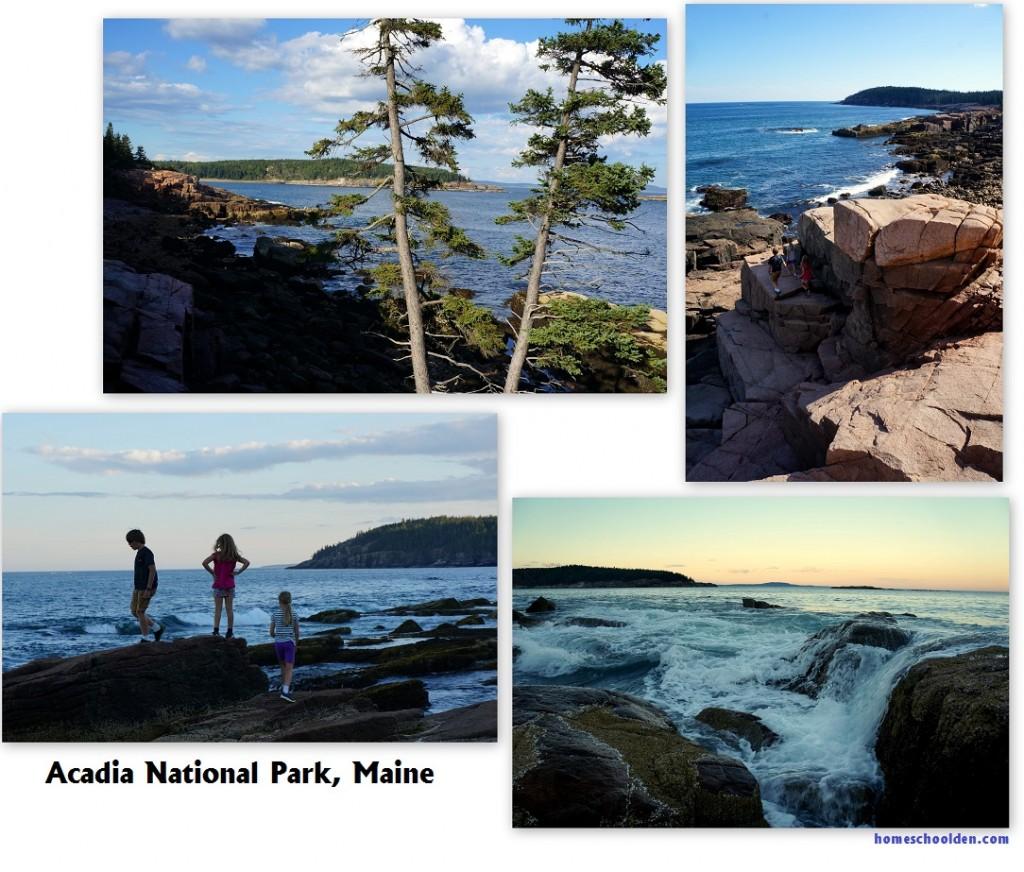Acadia-National-Park-Maine-homeschoolden
