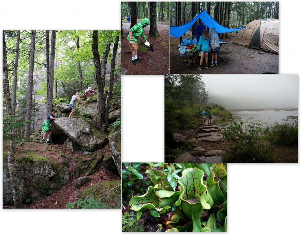 Acadia-National-Park-Maine-rain