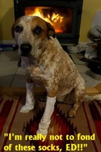 Boomers-Socks