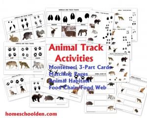 Animal-Track-Activities