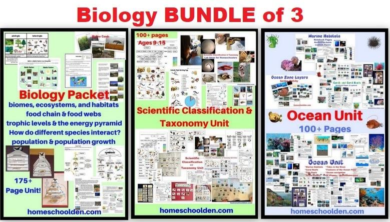 Biology BUNDLE of 3 - Biology - Taxonomy - Ocean Unit