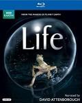 Life BBC Documentary