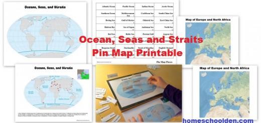Ocean Seas Straits Pin Map printable