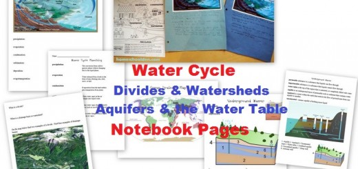 Water Cycle Notebook Pages