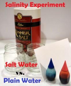 Salinity-Experiment