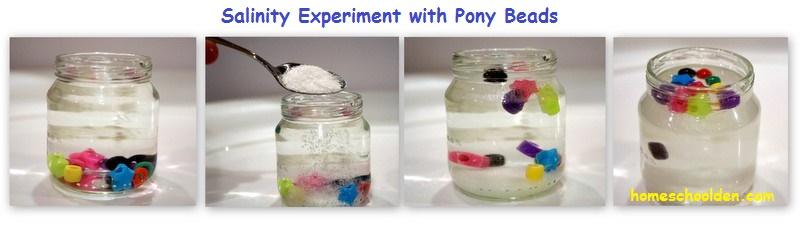 Salinity-Experiment-with-pony-beads
