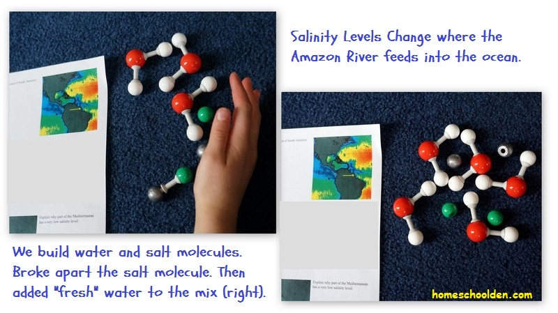 Salinity-Level-Activity-Amazon-River