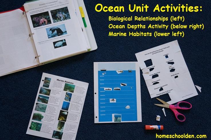 Ocean-Unit-Activities