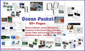 Ocean Unit, 65 pgs