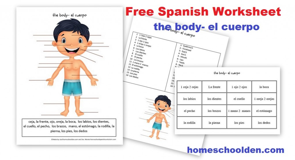 Parts Of The Body In Spanish Worksheet apexwindowsdoors – Worksheet in Spanish