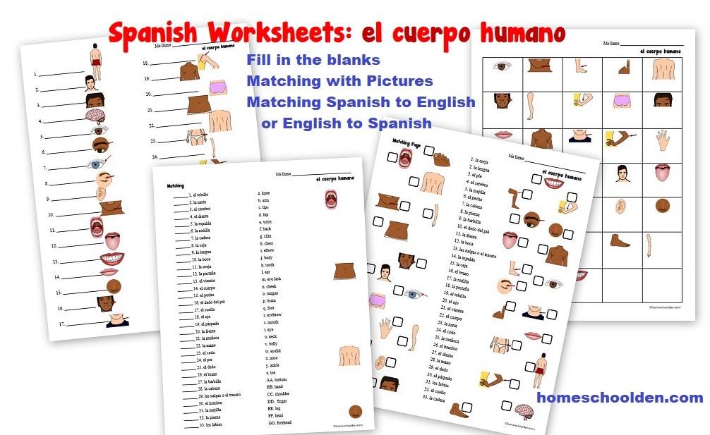 Spanish Body Worksheets - el cuerpo humano