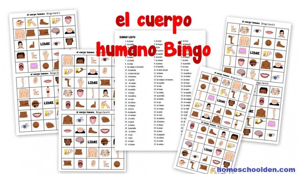 el cuerpo humano Bingo - Spanish Body Bingo