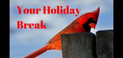 tips to get the most out of your homeschool break