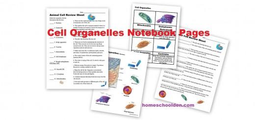 Cell Organelles Worksheets