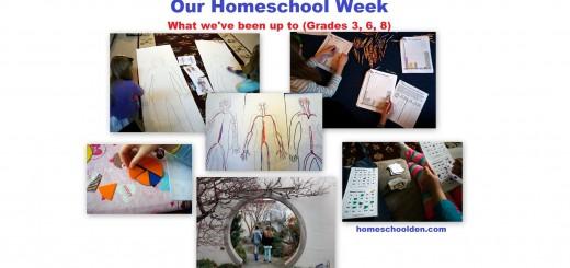 Homeschool Life Grade 3 6 8