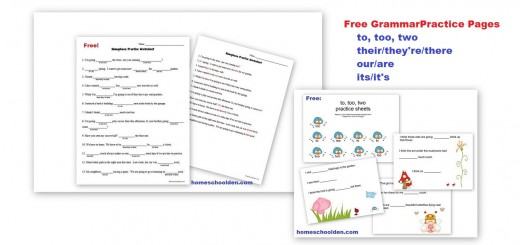 homophone free worksheet to too two their they're there its it's