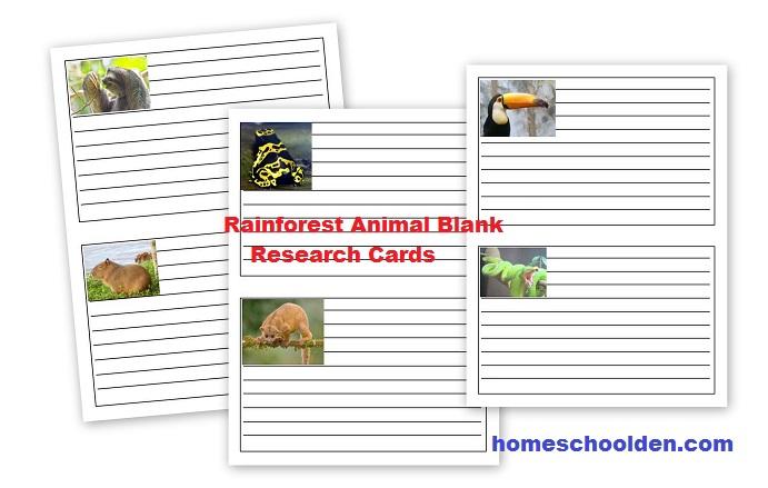 Rainforest Animal Worksheets