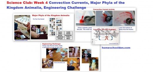 Science Club Week 4 Convection Currents Major Phyla Engineering