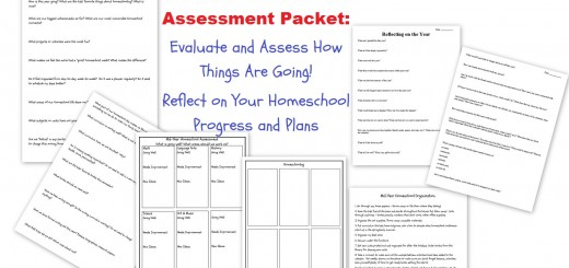 Mid Year Homeschool Assessment Packet - Reflect Evaluate Assess