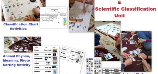 Taxonomy-Scientific Classification-Activities