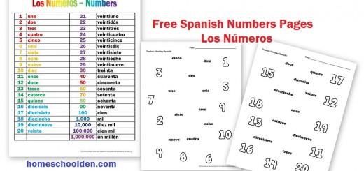 Los Números – Numbers Free Worksheets