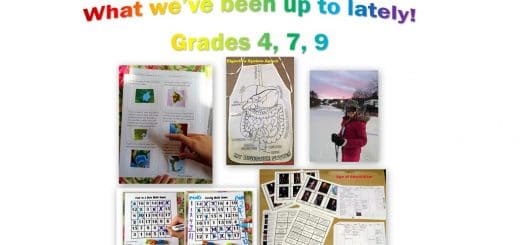 What we've been up to lately - grade 4 7 9