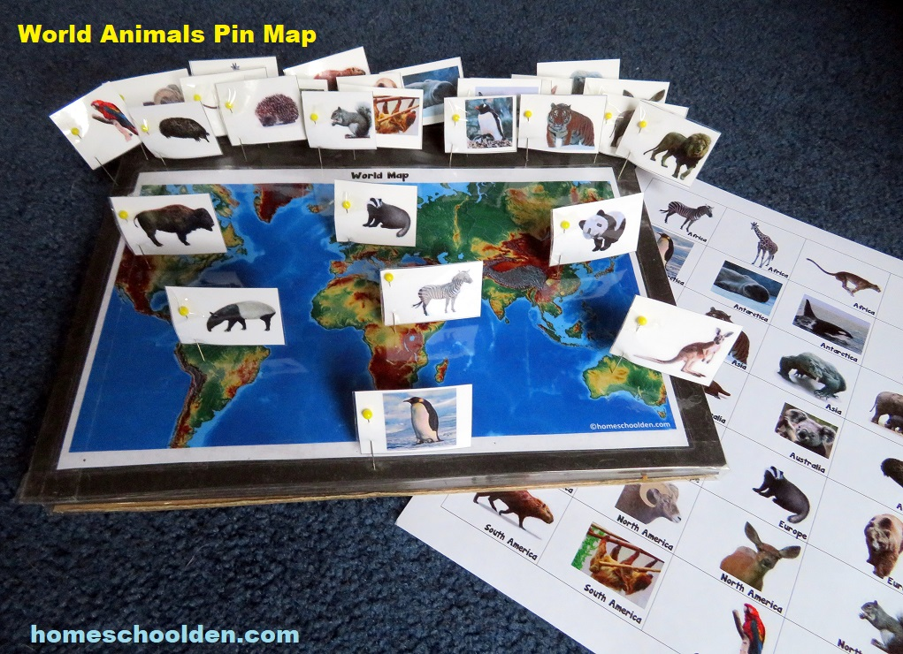 World Animals Pin Map