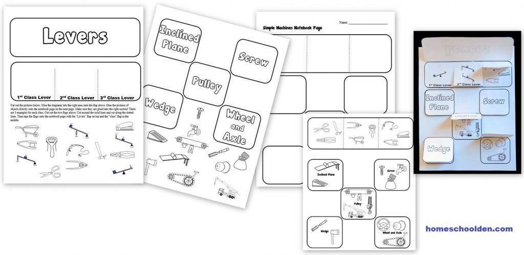 Workbooks vertebrates and invertebrates worksheets 5th grade : Simple Machines Interactive Notebook Activity - Homeschool Den
