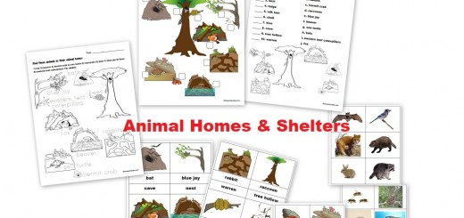 Animal Homes and Shelters - Where do animals live worksheets