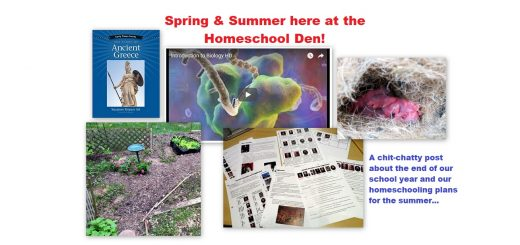 Spring Summer 2018 Homeschool Life