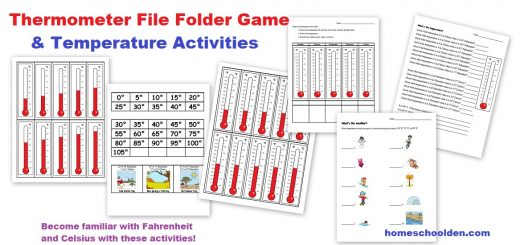 Thermometer and Temperature File Folder Activities