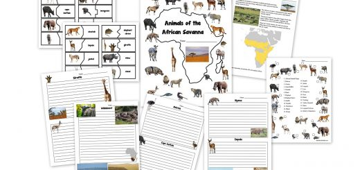 African Animals of the Savanna Worksheets and Notebook Pages