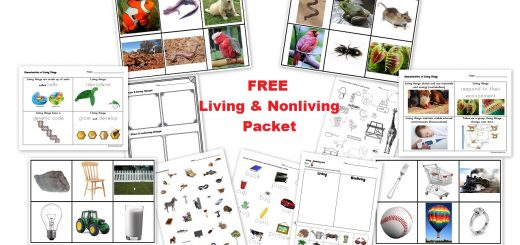 Free Living and Nonliving Cards Worksheets and Activities