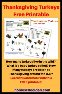 Thanksgiving Turkeys - Free Printable