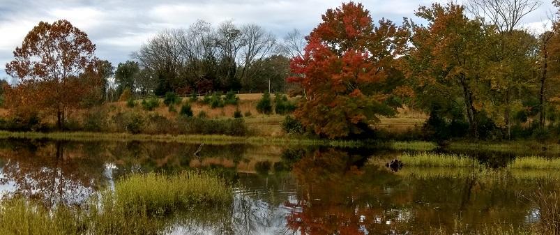 Hike in the Fall